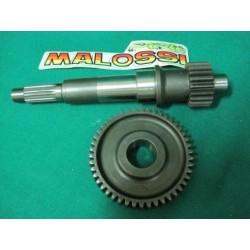 Ingranaggio primario HTQ Malossi Z 20 - 46 Rotax 125 150