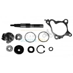 Kit Revisione Girante Honda Foresight 250 4T