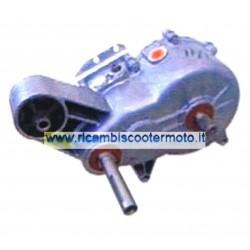 Riduttore Completo 1|11 Ligier 130169 Silent Block Centrato