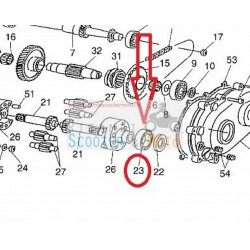 Cuscinetto albero uscita semicarter Ligier Ambra - Nova 500