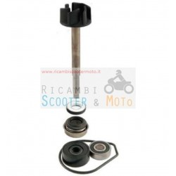 Kit Revisione Pompa Acqua Yamaha Majesty 400 (04-08) X-Max 400 (13)