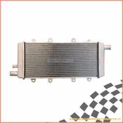 Radiatore acqua CHATENET CH26 EVO - CH40 motore Lombardini