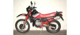 RX 125 Arizona