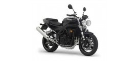 955 Speed Triple