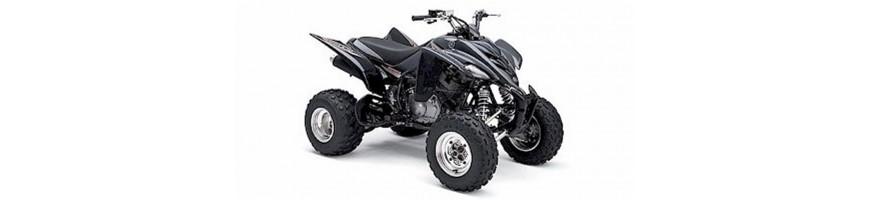 350 YFM RSE S T V W X Y - Raptor